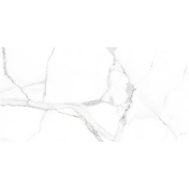 CICOGRES ALSACIA 60 x 120 cm, ALSACIA60X120RECT